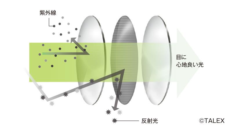 偏光レンズの構造
